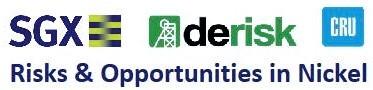 Derisk and CRU Group deliver joint Nickel presentation at SGX